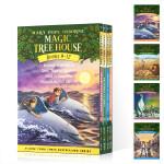 顺丰发货 英文原版 神奇树屋9-12盒装 Magic Tree House Volumes Boxed Set 青少年