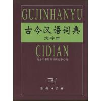古今汉语词典(大字本)