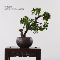 现代新中式蝴蝶兰花艺花瓶软装饰品仿真花卉客厅电视柜样板房摆件