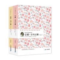 58 安娜 卡列尼娜(上 下) 常青藤名家名译第六辑