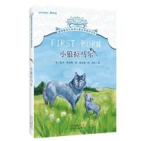 摆渡船当代世界儿童文学金奖书系 小狼拉马尔