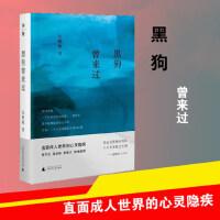 黑狗曾来过 中国近代随笔散文 文学 广西师范大学出版社朱朝敏 散文小说畅销书