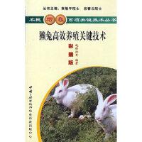 獭兔高效养殖关键技术,赵辉玲,罗守进,中国三峡出版社,9787802230958