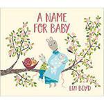 【预订】A Name for Baby 9781524714192