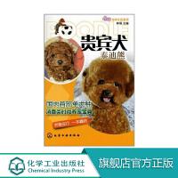 贵宾犬(泰迪熊) 化学工业出版社 9787122111104