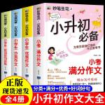 一只猫的使命 长青藤国际大奖小说书系 儿童文学8-10-12-15岁少儿读物图画书 三四五六年级小学生课外阅读书籍