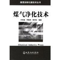 煤气净化技术/煤清洁转化新技术丛书 许世森,李春虎,郜时旺 化学工业出版社 9787502577049