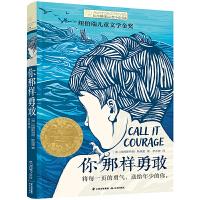 长青藤国际大奖小说第八辑・你那样勇敢