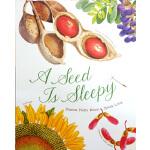 英文原版 A Seed is Sleepy 种子,如此酣睡 美丽成长生命系列 科普绘本 百科认知读物 小学STEAM课