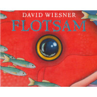 Flotsam (Caldecott Medal Book) 《海底的秘密》(2007年凯迪克金奖,平装) ISBN 9781849394499