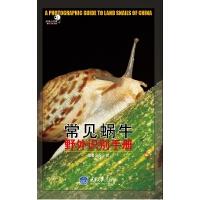 常见蜗牛野外识别手册