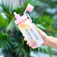 吸管水杯女玻璃杯可爱便携学生杯子创意个性潮流少女心网红磨砂杯