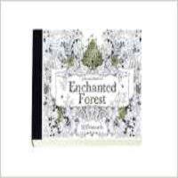 现货 Enchanted Forest Postcard