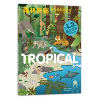 长长的贴纸地带:雨林探秘 Stickyscapes : Tropical