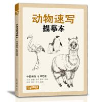 动物速写描摹本