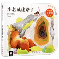 奇妙洞洞书第四辑-小老鼠迷路了