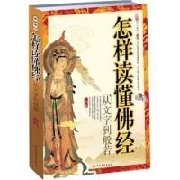 【二手书8成新】怎样读懂佛经:从文字到般若 一行 陕西师范大学出版社