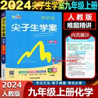 2020春尖子生学案九年级下册化学人教版RJ