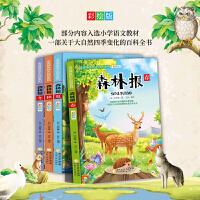 森林报 春夏秋冬 4册 彩图版 小学生课外阅读