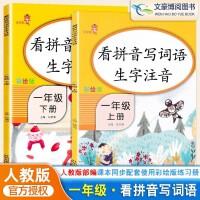 看拼音写词语生字注音一年级上下册语文课本同步训练人教版 彩绘版