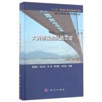 大跨桥梁的风致灾变