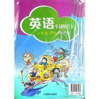 2021春英语口语交际生词图片卡教师用6/六年级下册上海教育出版社