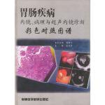胃肠疾病内镜、病理与超声内镜诊断彩色对照 张亚历 军事医科出版社 9787801211934