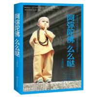 【正版二手书9成新左右】阿弥陀佛么么哒 大冰 湖南文艺出版社
