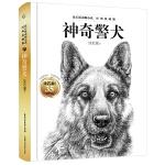 沈石溪动物小说 经典爱藏版・神奇警犬