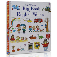 【包邮现货】英文原版 Big Book of English Words英语单词大书 纸板书 英语词汇图解 儿童启蒙认知词汇书