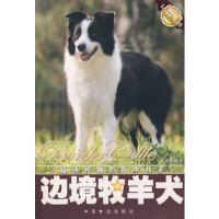 边境牧羊犬 文俸勇著 中国林业出版社 9787503841644