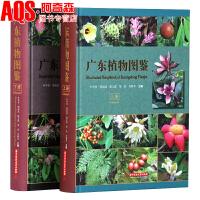 广东植物图鉴 上下册 2本套装 广东植物彩图大全 维管束植物蕨类裸子被子景观设计植物图文工具书籍