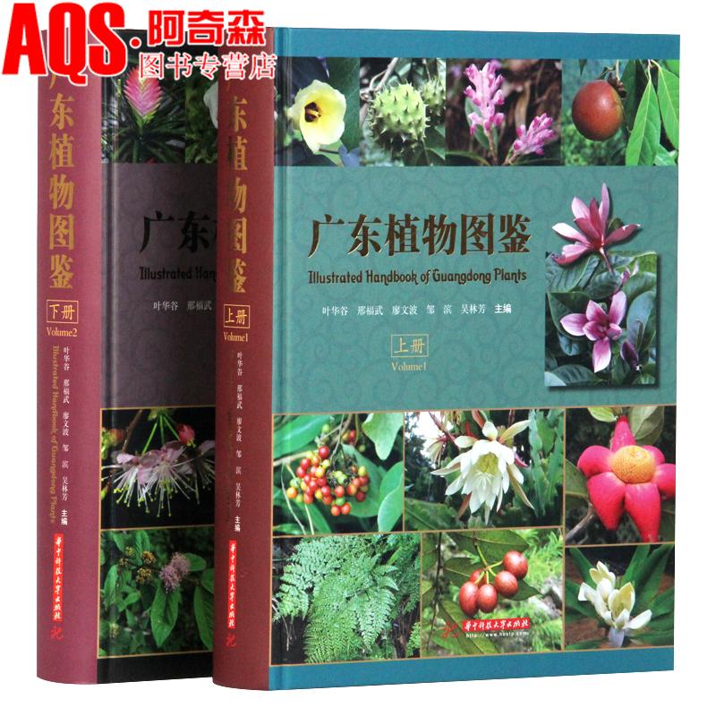 广东植物图鉴 上下册 2本套装 广东植物彩图大全 维管束植物蕨类裸子被子景观设计植物图文工具书籍 中英文对照