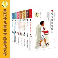黄蓓佳获奖经典长篇小说(套装共7册)