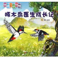 啄木鸟医生成长记(你好!小动物)