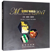 【正版二手书9成新左右】世界矿物精品2017 刘树臣,杨良锋 地质出版社