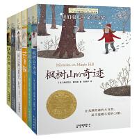 全5册 长青藤国际大奖小说书系芒果猫枫树山的奇迹阿比琳的夏天作文里的奇案儿童文学故事书10-12-15岁三四五六年级小学