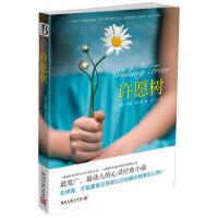 【正版二手书9成新左右】#N/A (美)肖尔斯 湖南文艺出版社