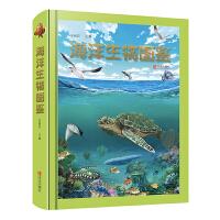 海洋生物图鉴