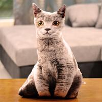 可爱仿真动物抱枕靠垫狗狗猫咪哈士奇宠物毛绒玩具娃娃礼物可拆洗
