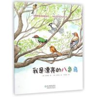 我是漂亮的八色鸟/蒲公英科学绘本系列