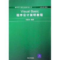Visual Basic程序设计简明教程