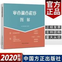 审查调查程序图解(2020)中国方正出版社 纪检监察监督执纪工作图解系列