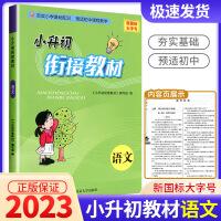 2021新版学而优小升初衔接教材语文小学升初中暑假作业