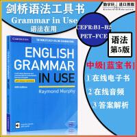 语法圣典:剑桥中级语法 English Grammar in Use with answers and ebook 带答案与电子书Code(不带光盘)