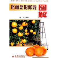 【新书店正版包邮】脐橙整形修剪图解 陈杰著 金盾出版社 9787508234281