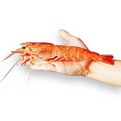大希地阿根廷L1红虾2kg*1盒
