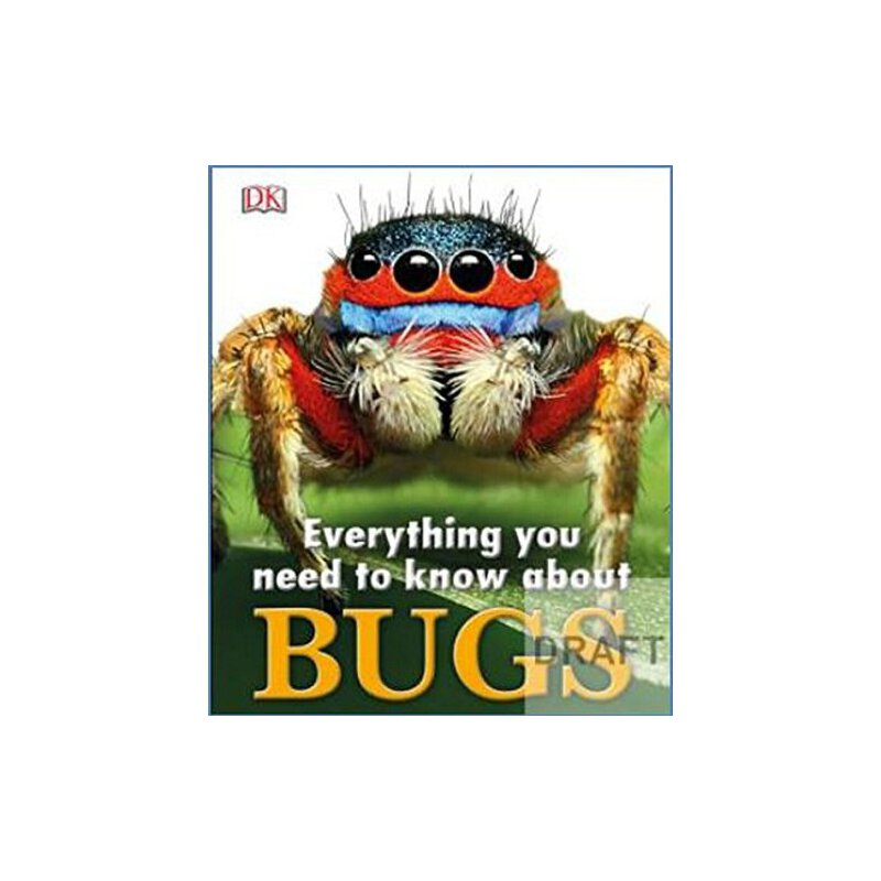 Everything You Need to Know About Bugs