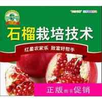 【二手旧书九成新小说】《石榴树栽培技术/软籽石榴种植病害防治4