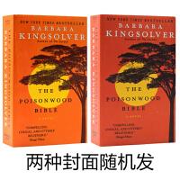 毒木圣经The Poisonwood Bible英文原版小说 儿童课外阅读 入选欧普拉读书俱乐部的畅销神话